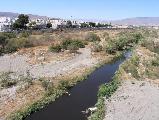 Un vertido de aguas residuales podría estar detrás de la proliferación de mosquitos